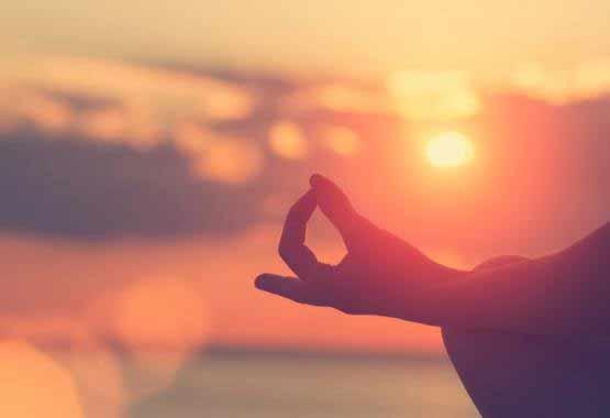 Meditación Mindfulness, Budista, Biorrelatividad, Sanación Planetaria