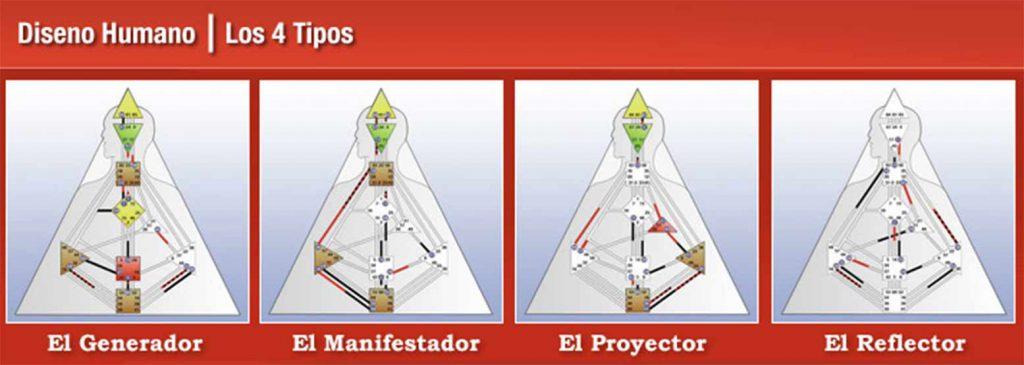 Sistema de Diseño Humano. Los 4 tipos