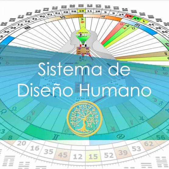 Sistema de Diseño Humano