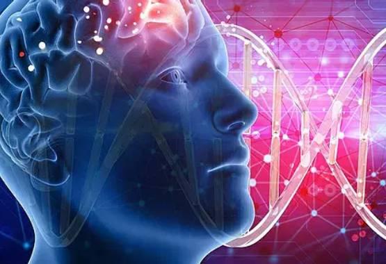 Limpieza Memoria Celular